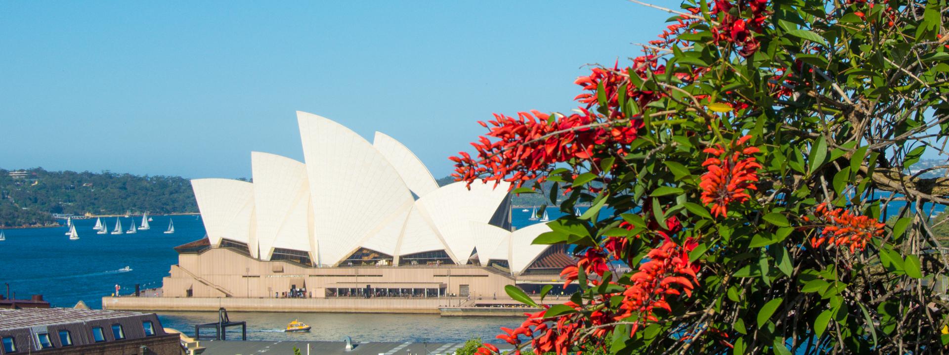 Полгода в Австралии