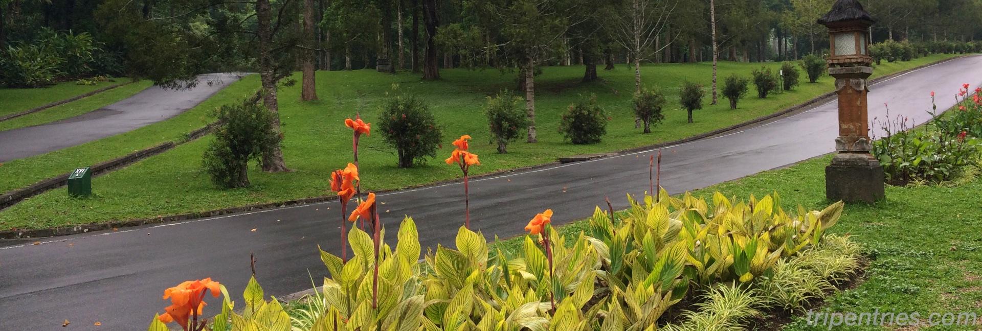 Ботанический сад — Botanical Garden