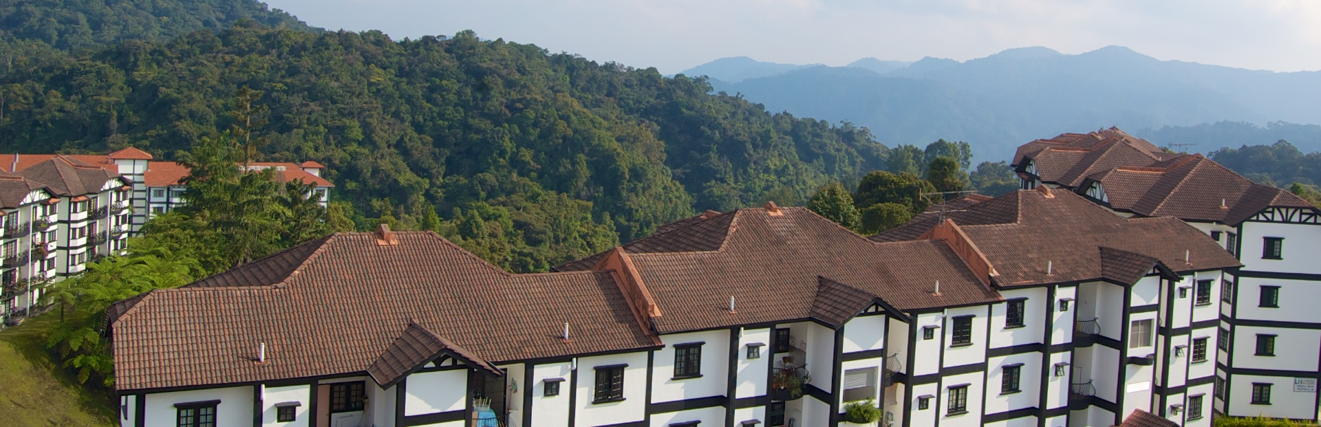 Cameron Highlands: Что это за место такое?