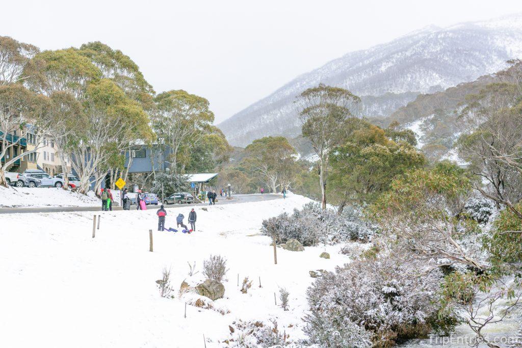 snow-18